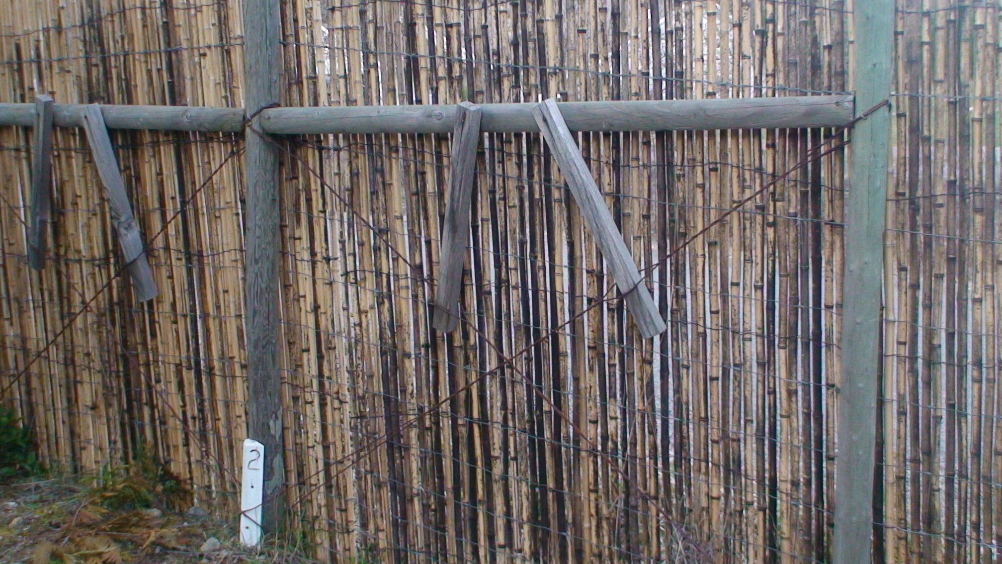 Mold problem on new purchased bamboo fence bamboo forums attachment 1492 baanklon Gallery